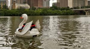 Swan Paddleboat Rentals on Lady Bird Lake
